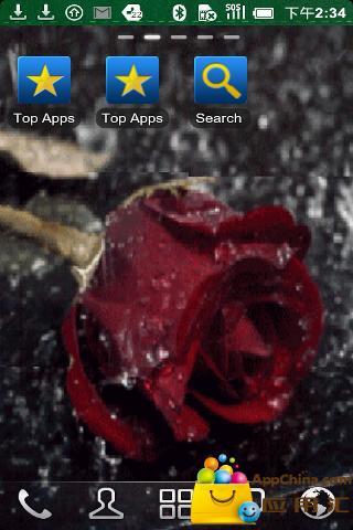 雨中玫瑰动态壁纸 個人化 App-愛順發玩APP