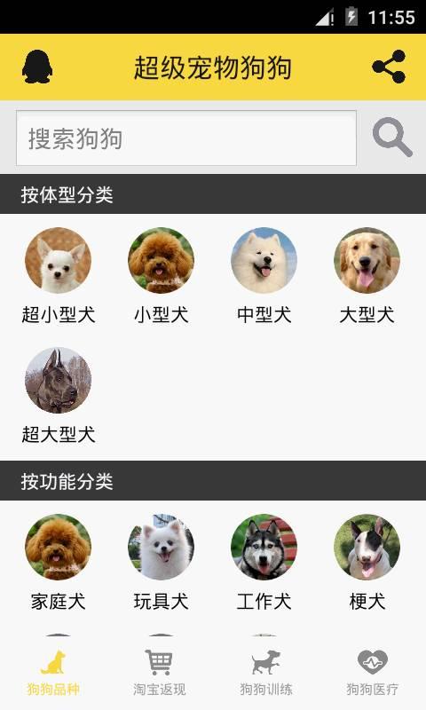 宠物狗狗助手