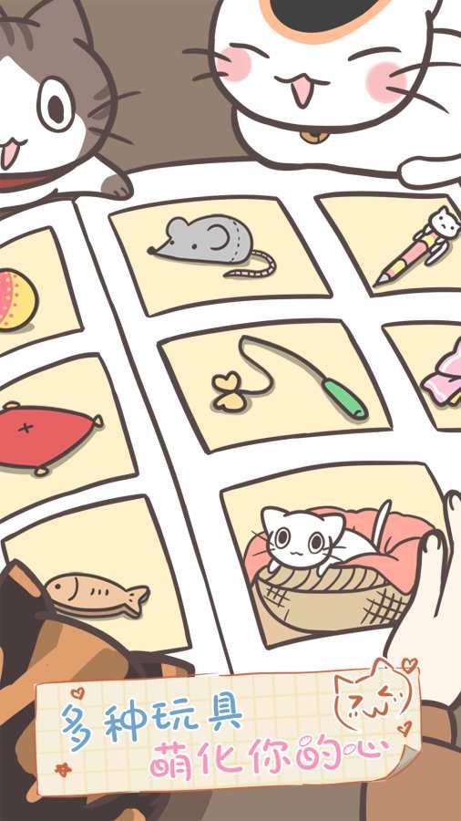 猫咪饲养日常截图4
