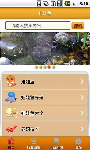 娃娃鱼|玩生活App免費|玩APPs