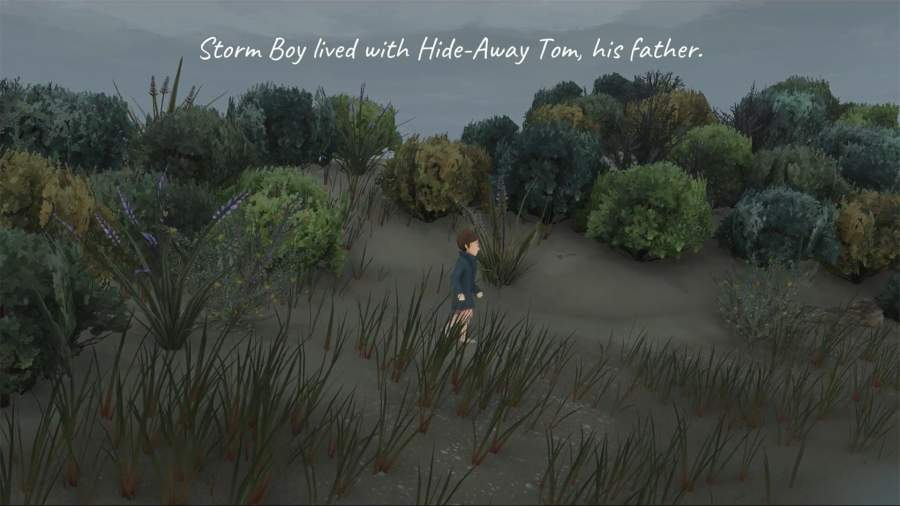 风暴男孩截图4