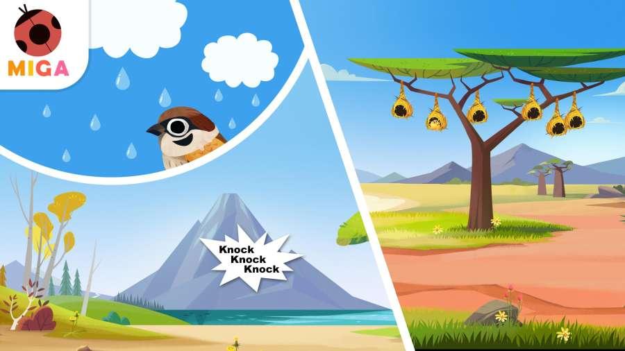 米加森林截图0