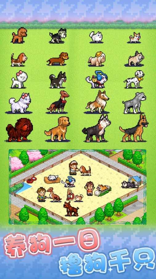 发现狗狗乐园截图1