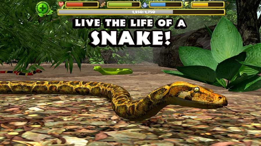 蟒蛇模拟器
