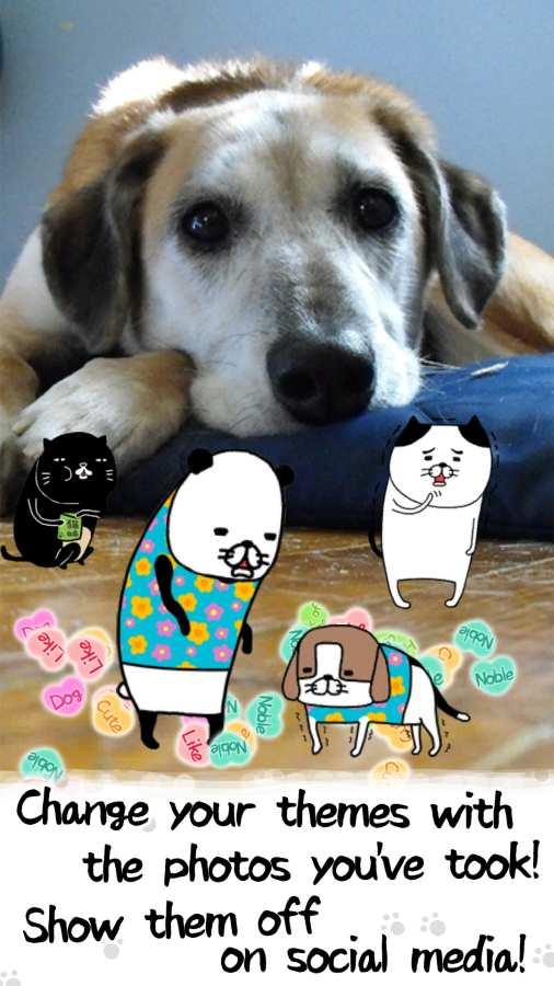 熊猫与狗截图3