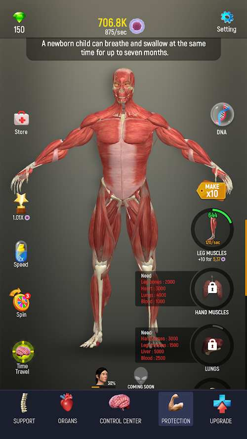 人体模型截图0