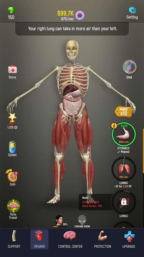 人体模型截图1