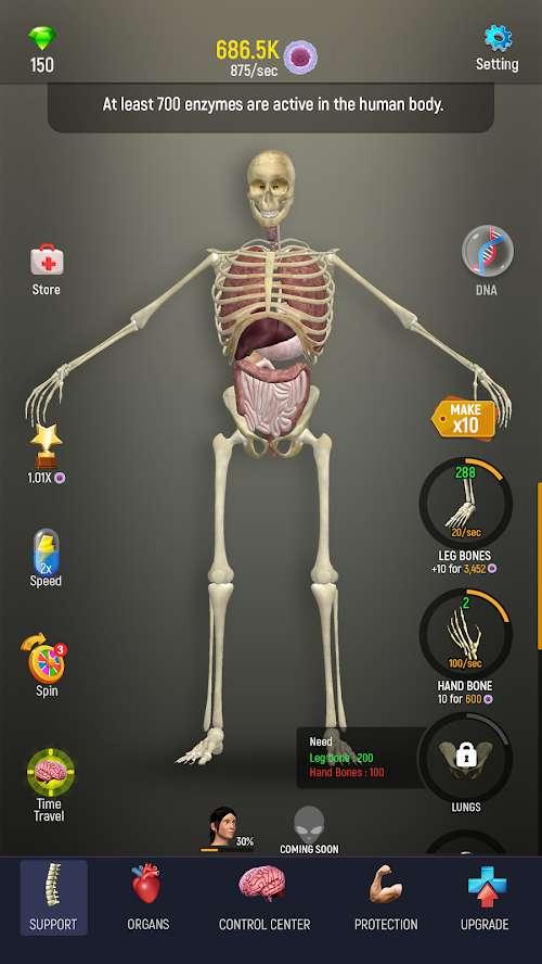 人体模型截图2