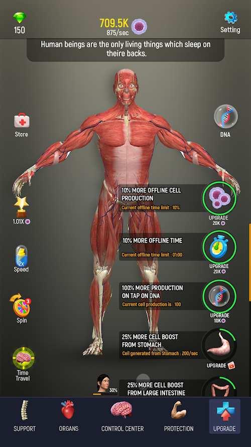人体模型截图3