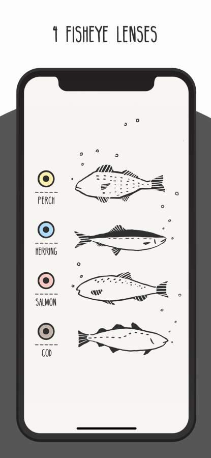 FISHI - 鱼眼相机截图2