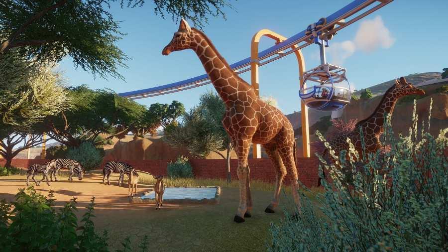 动物园之星 安卓版截图2