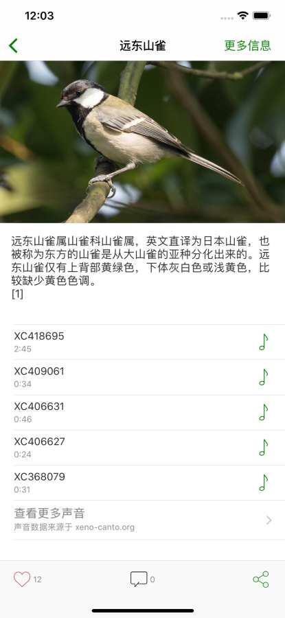 鸟 - 鸟类百科截图3