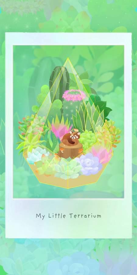我的水晶花园截图1