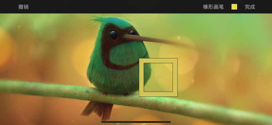 Pixelmator截图2