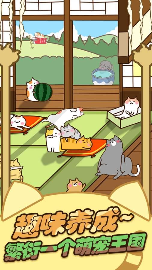 猫咪田园截图4