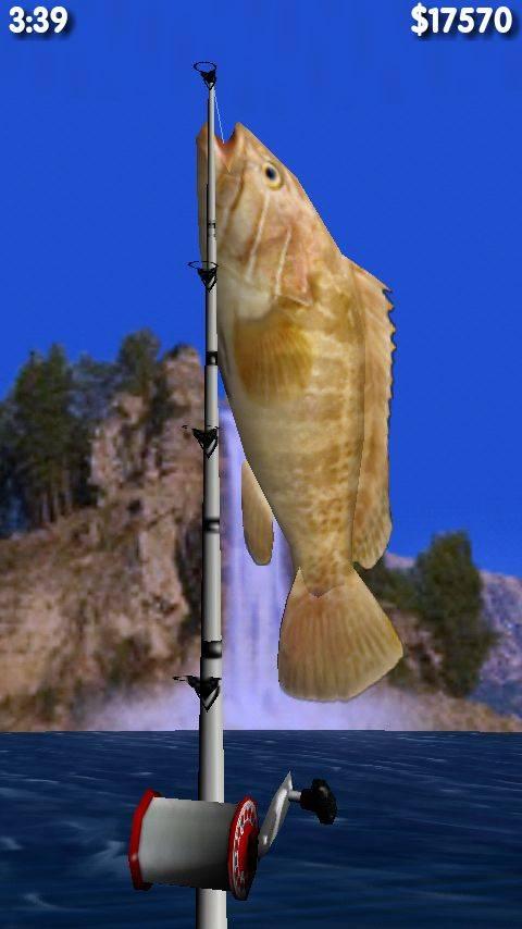 钓大鱼截图3