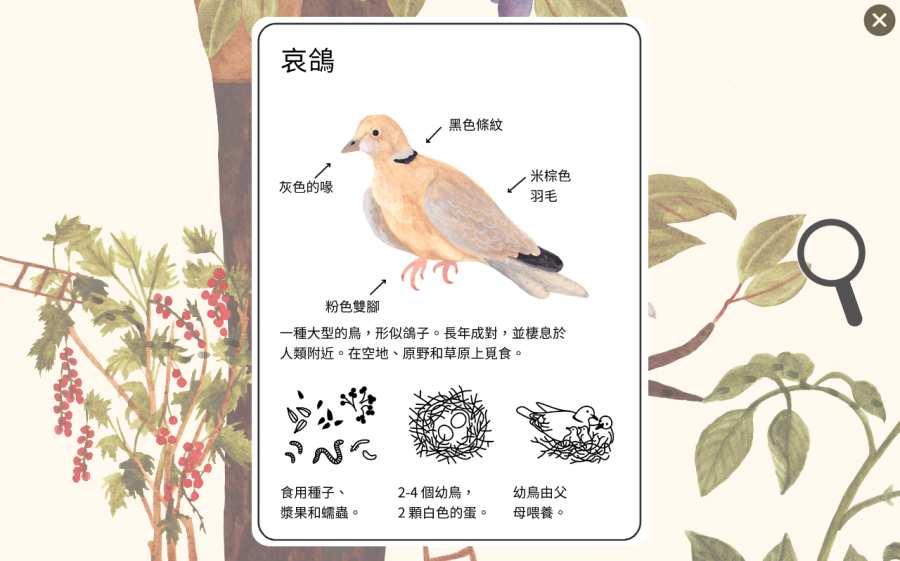 小棕鼠的自然生态百科截图2