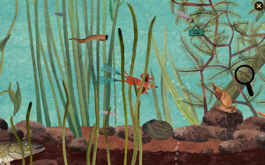 小棕鼠的自然生态百科截图3