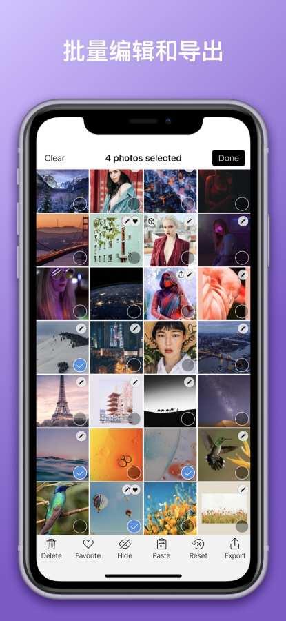 Darkroom:照片和视频编辑器截图3