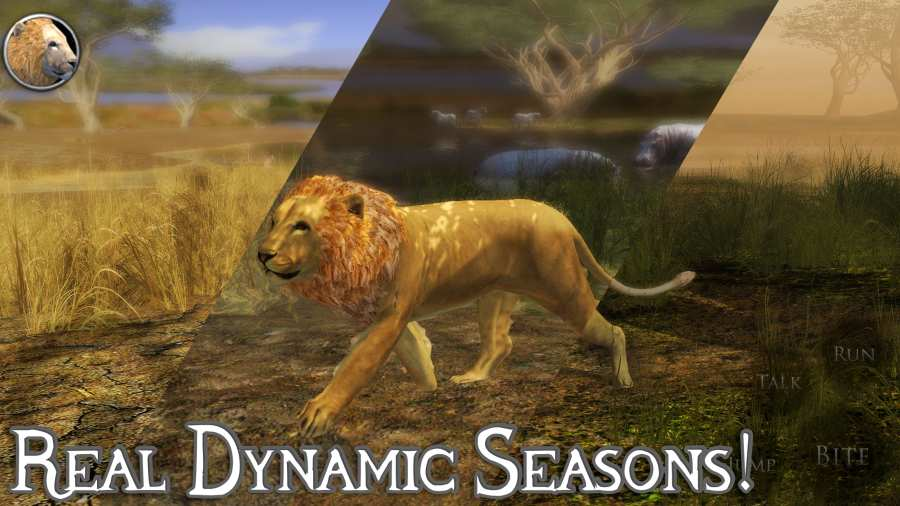 终极狮子模拟器2截图3