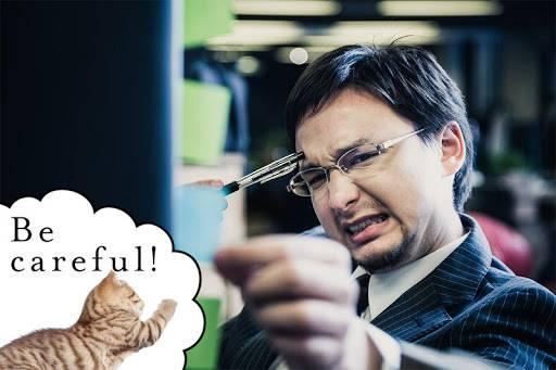 记事本 : 猫 - 笔记