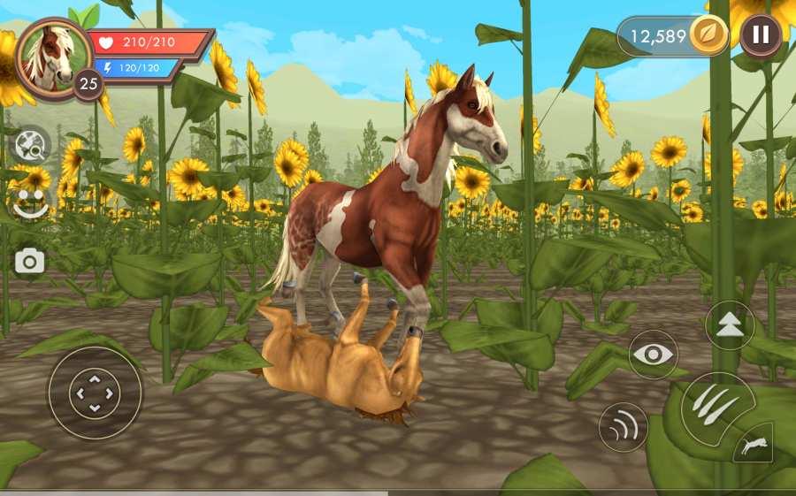 野生动物:动物模拟Online截图0