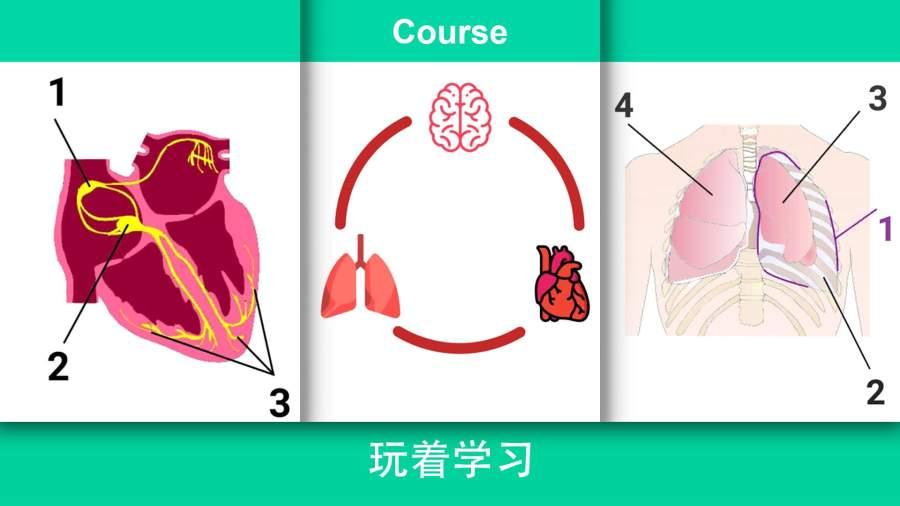 现实医疗模拟器 中文版截图3