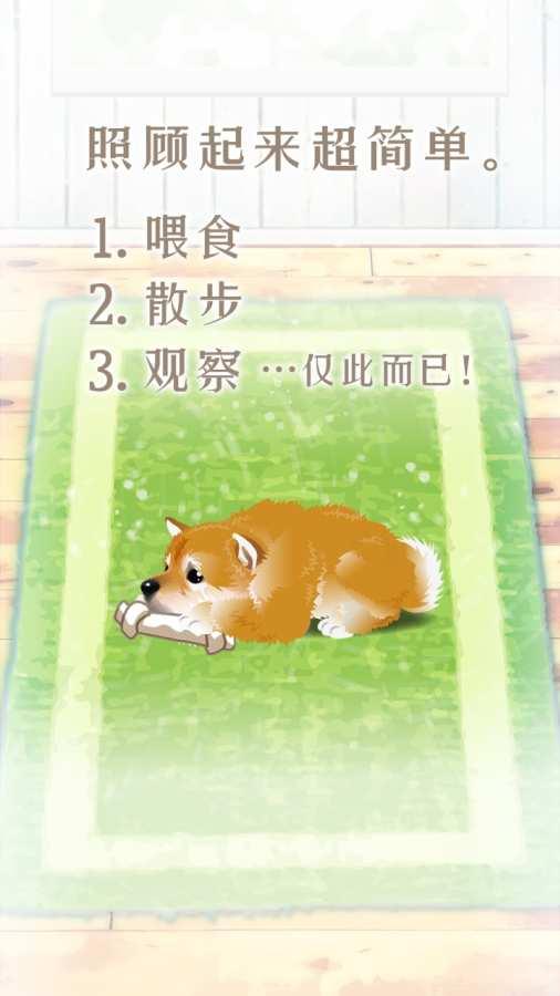 养育柴犬的治愈游戏截图0