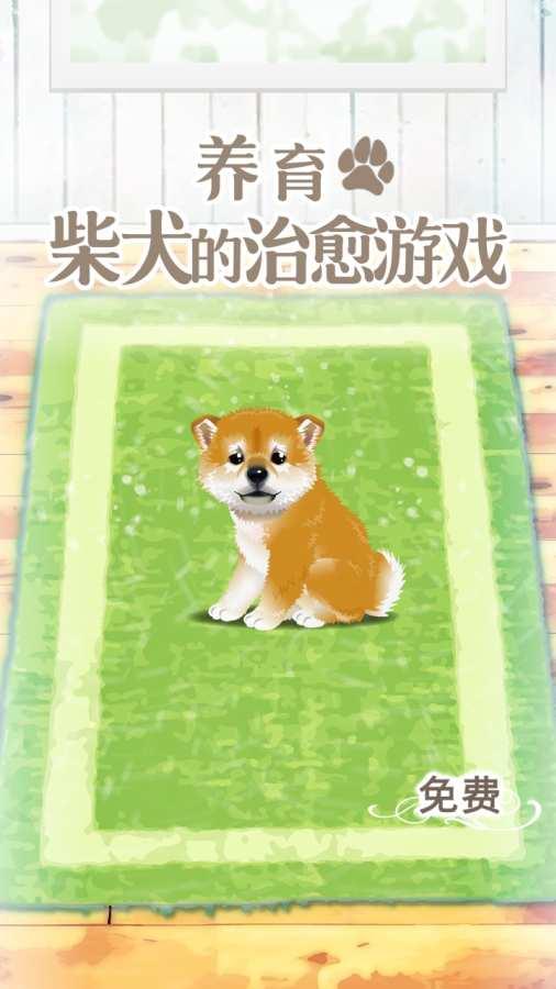 养育柴犬的治愈游戏截图2
