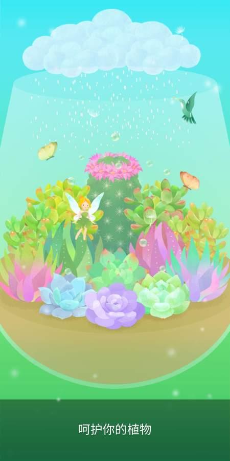 我的水晶花园截图3