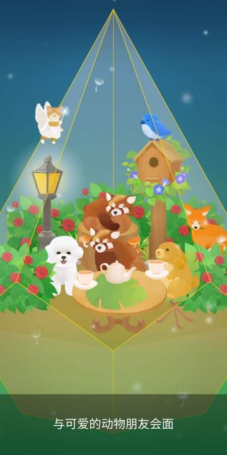 我的水晶花园截图4