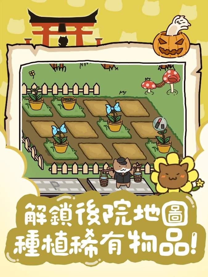 猫咪庭院物语截图4