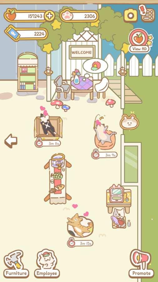 猫咪Spa截图1
