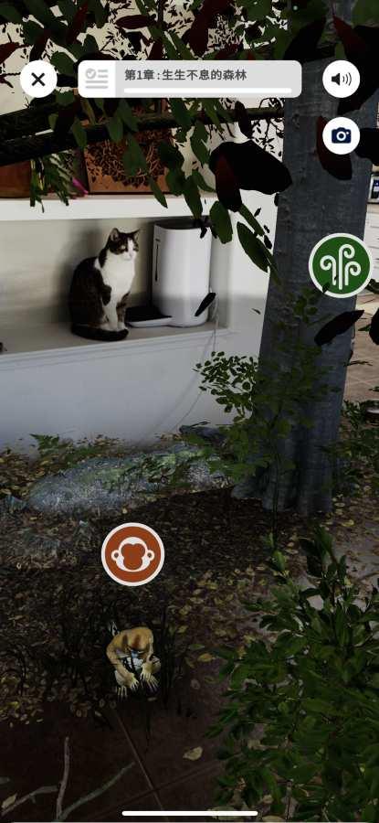 WWF森林截图1