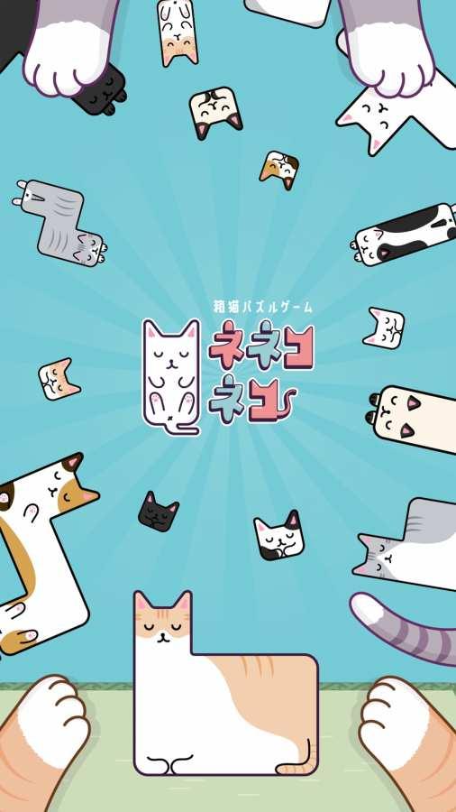 猫猫盒截图2