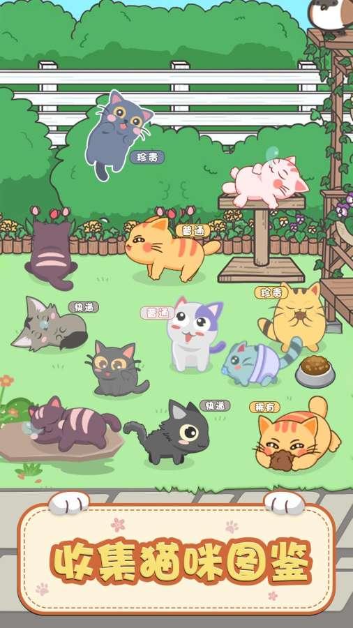 奇妙猫之家截图2