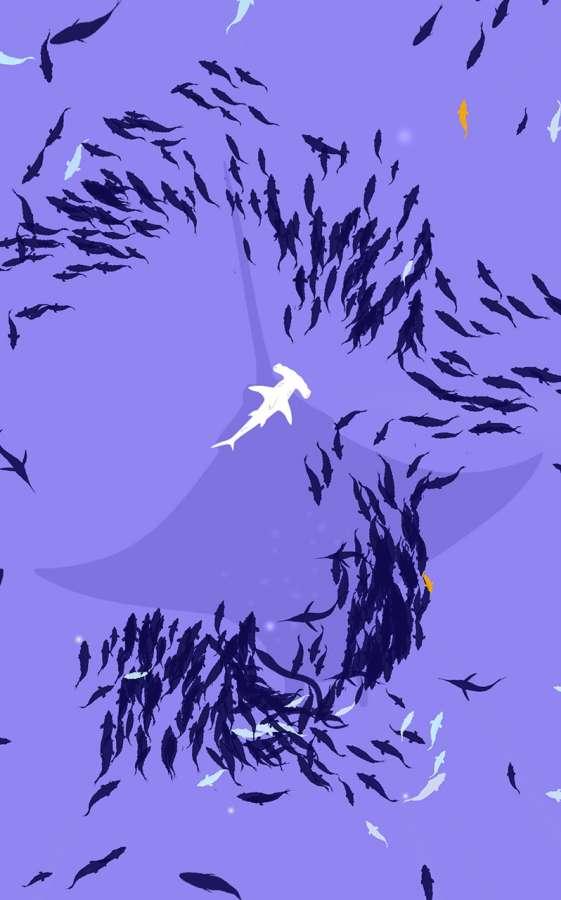 淺灘魚群截圖3