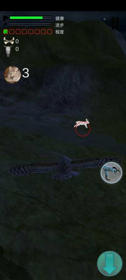 猫头鹰狩猎之旅截图1