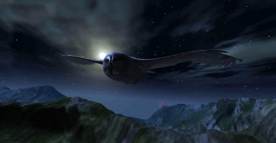 猫头鹰狩猎之旅截图2