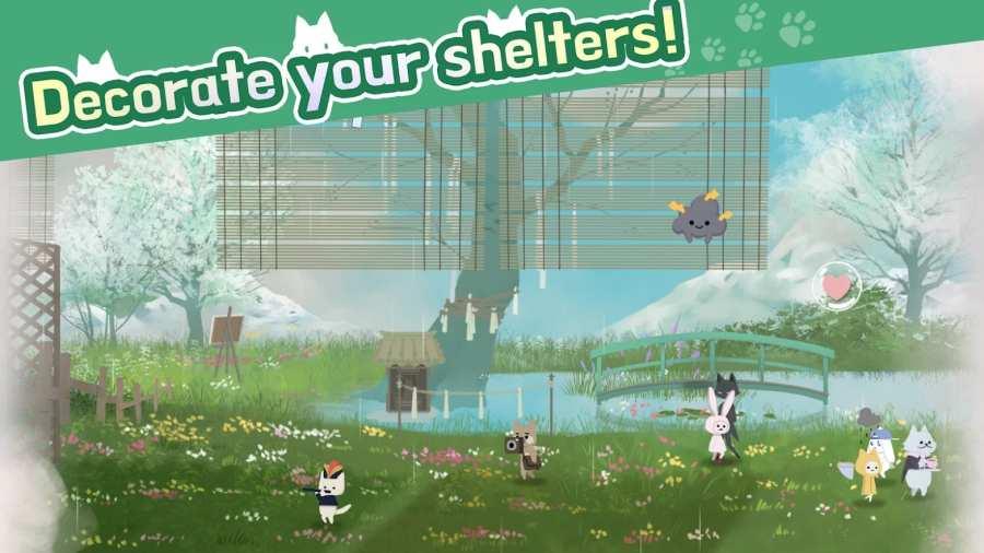 猫咪庇护所和动物朋友截图2
