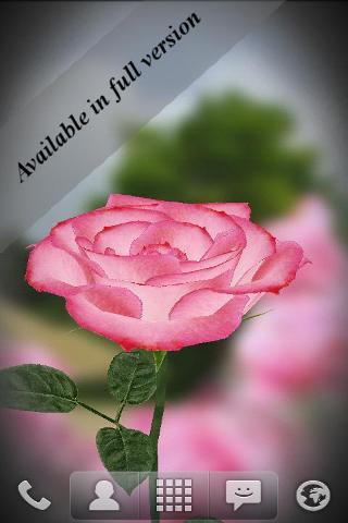 3D Rose Live Wallpaper Free截图2