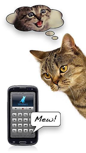 人猫交流器