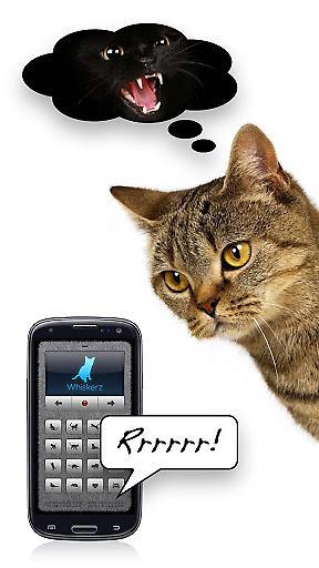 人猫交流器截图1