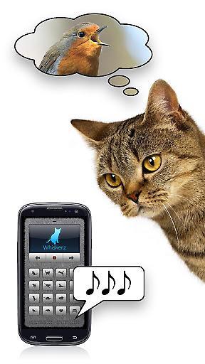 人猫交流器截图2
