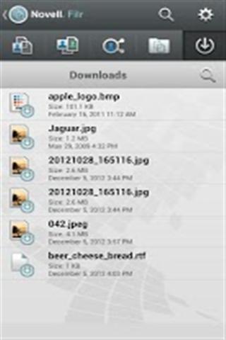 文件访问和共享 Novell Filr