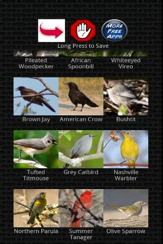 經典鳥呼叫截图0