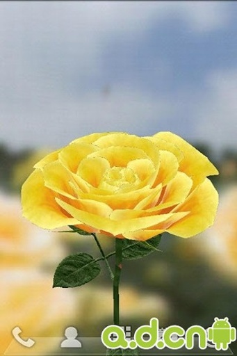 3D玫瑰花动态壁纸截图3