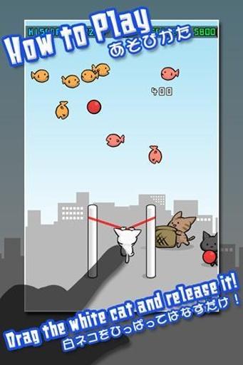 猫咪射击截图3